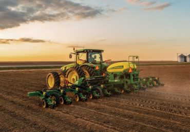 Soja: plantio no Brasil está em 35,8%; confira quadro com estados mais avançados